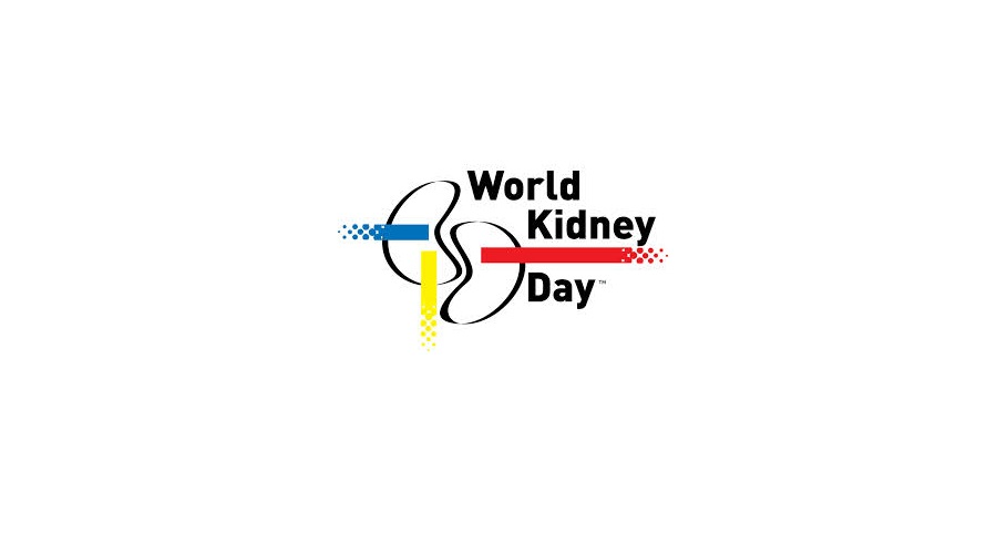 Teaching Resources Promote Kidney Health | PK Education